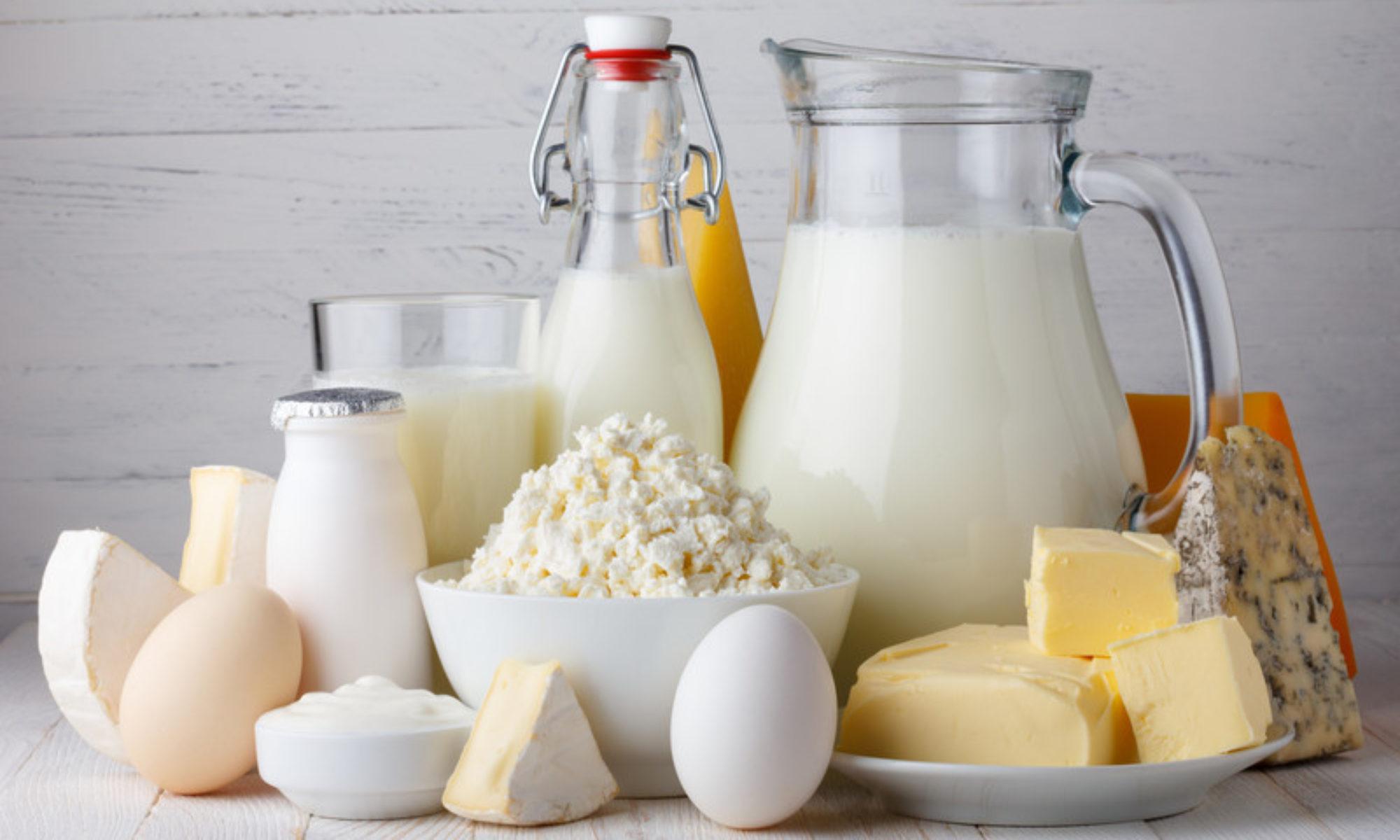 Mini laiterie  tout le matériel professionnel pour la création de votre mini laiterie